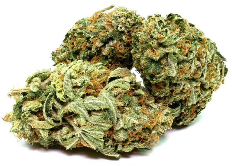 Shop And Order Weed: Get Discounts And Special Gifts