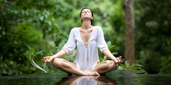 herbs quiet stressed nerves